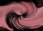 Rose Textures