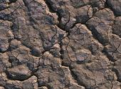 Terre sèche Textures