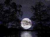 Pleine lune Fonds d'écran