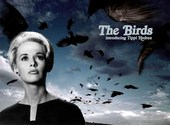 "Couverture du film ""The Birds"" Fonds d'écran"