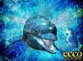 Ecco le dauphin Fonds d'écran
