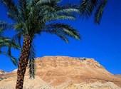 Desert Fonds d'écran
