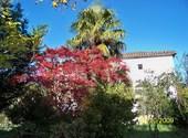 Jolies couleurs d'automne Fonds d'écran