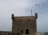 Remparts portugais, essaouira - mogador (maroc) Fonds d'écran
