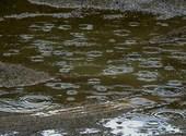 Ronds dans l'eau 2 Fonds d'écran