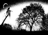 Grim reaper Fonds d'écran